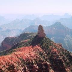 VS - Arizona (7)