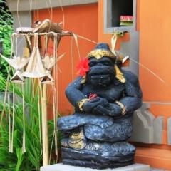 Bali (11)
