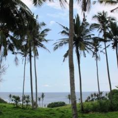Bali (53)