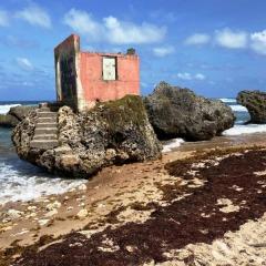 Barbados-12