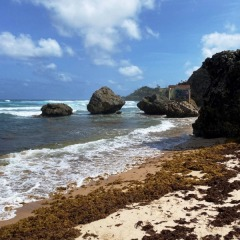 Barbados-18
