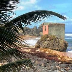 Barbados-32