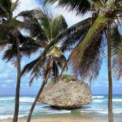 Barbados-33