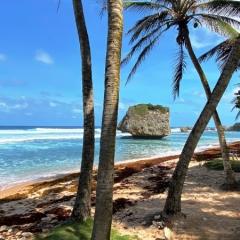 Barbados-35