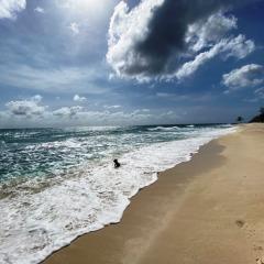 Barbados-38