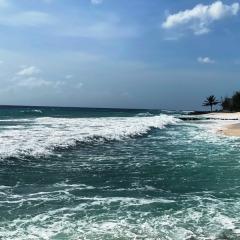 Barbados-39