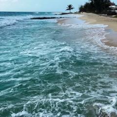 Barbados-44