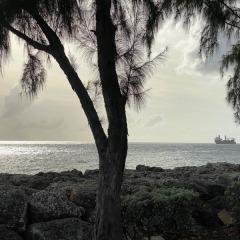 Barbados-48
