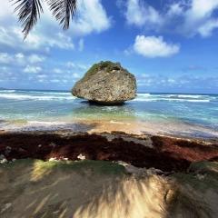 Barbados-5