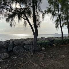 Barbados-50