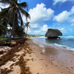 Barbados-7