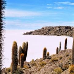 Bolivia (13)