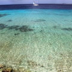Bonaire (17)