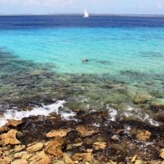 Bonaire (18)