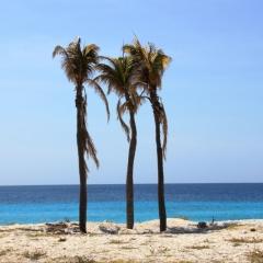 Bonaire (20)