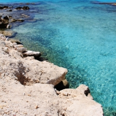 Bonaire (50)