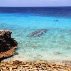 Bonaire (51)