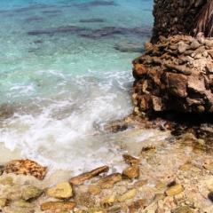 Bonaire (52)