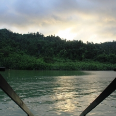 Borneo (13)