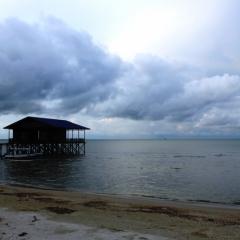 Borneo (14)