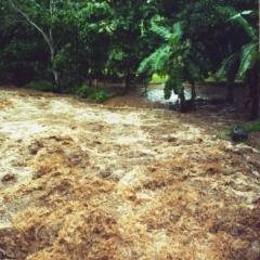 Costa Rica (29)