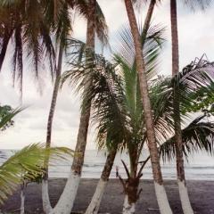 Costa Rica (33)