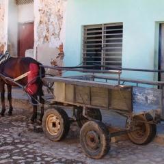 Cuba (30)