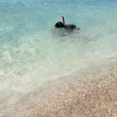 Curacao (15)