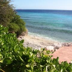 Curacao (30)