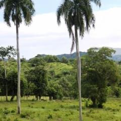Dominicaanse Republiek (18)