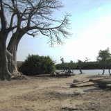 Gambia (9)