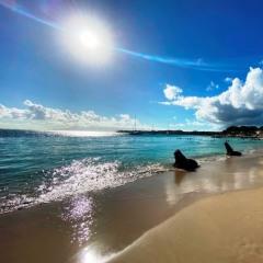 Guadeloupe-70