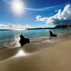 Guadeloupe-72