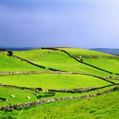 Ierland (1)