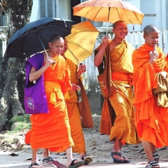 Laos (21)