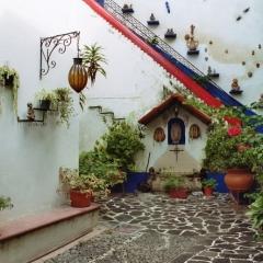 Mexico (29)