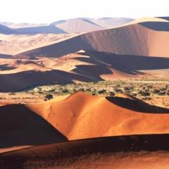 Namibie (19)