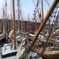 Netherlands - Amsterdam Sail (12)