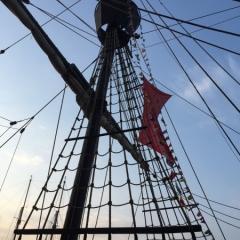 Netherlands - Amsterdam Sail (25)