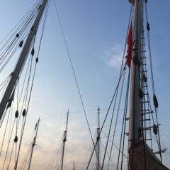 Netherlands - Amsterdam Sail (31)