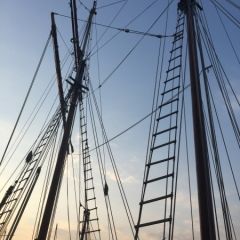 Netherlands - Amsterdam Sail (34)