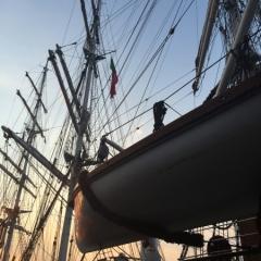 Netherlands - Amsterdam Sail (36)