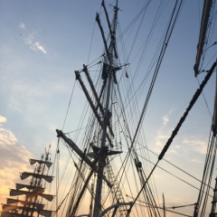 Netherlands - Amsterdam Sail (41)