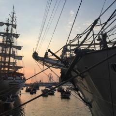Netherlands - Amsterdam Sail (43)