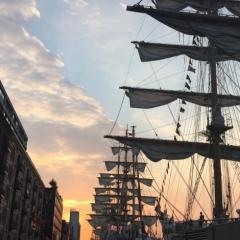 Netherlands - Amsterdam Sail (49)