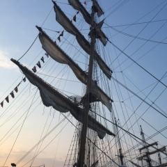 Netherlands - Amsterdam Sail (51)