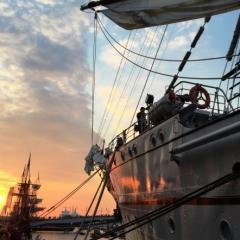 Netherlands - Amsterdam Sail (56)