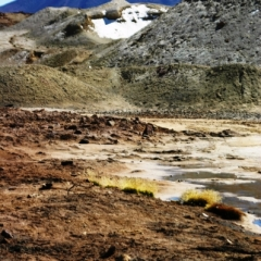 Noord Chili (26)
