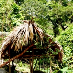 Noord Colombia (47)