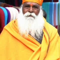 Noord West India (15)
